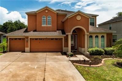 203 Westchester Hills Lane, Valrico, FL 33594 - MLS#: T3110326