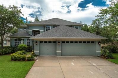 11315 Minaret Drive, Tampa, FL 33626 - MLS#: T3110344