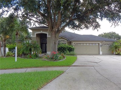 10022 Oxford Chapel Drive, Tampa, FL 33647 - MLS#: T3110437