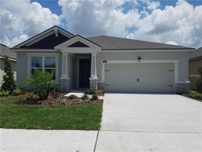 11609 Blue Woods Drive, Riverview, FL 33569 - MLS#: T3110923