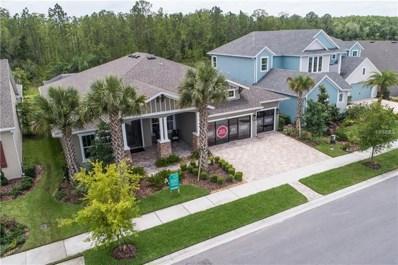16766 Courtyard Loop, Land O Lakes, FL 34638 - #: T3110995