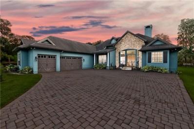 21444 Hopson Road, Land O Lakes, FL 34638 - MLS#: T3111132