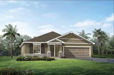11612 Blue Woods Drive, Riverview, FL 33569 - MLS#: T3111279