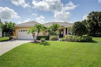 5437 Twin Creeks Drive, Valrico, FL 33596 - MLS#: T3111312