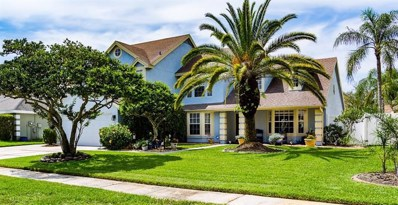 6603 Timber Brook Court, Tampa, FL 33625 - MLS#: T3111386
