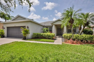 10922 Holly Cone Drive, Riverview, FL 33569 - MLS#: T3111460
