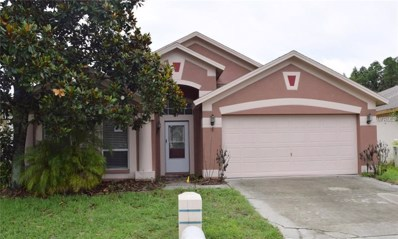 30926 Burleigh Drive, Wesley Chapel, FL 33543 - MLS#: T3111734