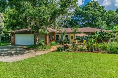 11266 Pine Forest Drive, New Port Richey, FL 34654 - MLS#: T3111973