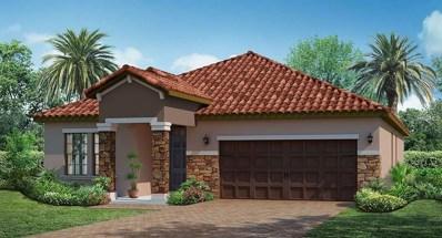 12043 Cardinal Flower Drive, Riverview, FL 33579 - MLS#: T3112003