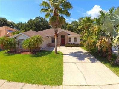 23203 Emerson Way, Land O Lakes, FL 34639 - MLS#: T3112322