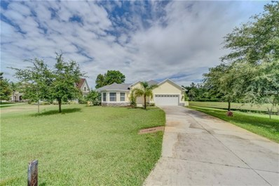 19930 Dolores Ann Court, Lutz, FL 33549 - MLS#: T3112358