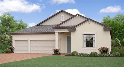 11707 Bearpaw Shale Street, Riverview, FL 33579 - MLS#: T3112639