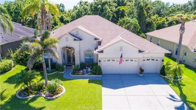 2447 Wood Pointe Drive, Holiday, FL 34691 - MLS#: T3112642