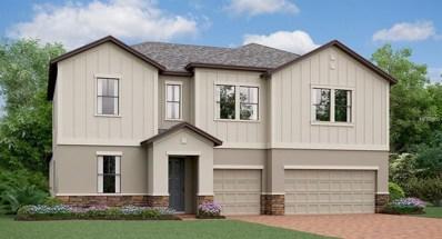 11711 Bearpaw Shale Street, Riverview, FL 33579 - MLS#: T3112690