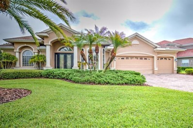 10713 Cory Lake Drive, Tampa, FL 33647 - MLS#: T3113166