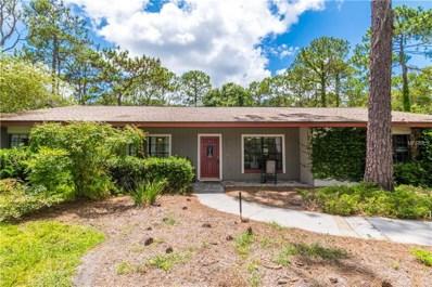 19406 Pine Valley Drive, Odessa, FL 33556 - MLS#: T3113346