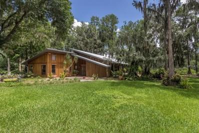 18115 Burrell Road, Odessa, FL 33556 - MLS#: T3113508