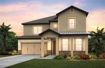 18760 Birchwood Groves Drive, Lutz, FL 33558 - MLS#: T3114009