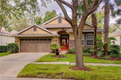 6119 Gannetwood Place, Lithia, FL 33547 - MLS#: T3114191