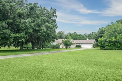 22199 Garmisch Way, Brooksville, FL 34601 - MLS#: T3114216