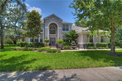 5711 Ternwater Place, Lithia, FL 33547 - MLS#: T3114276