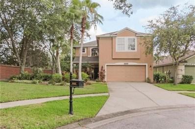 10202 Woodford Bridge Street, Tampa, FL 33626 - MLS#: T3114475