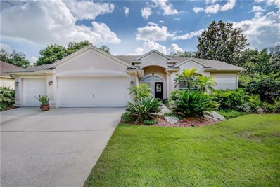 4001 Canter Court, Valrico, FL 33596 - MLS#: T3114487