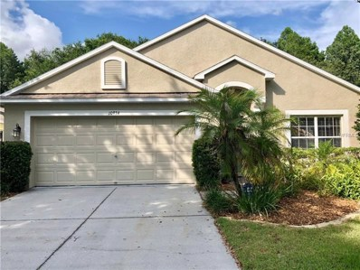 10934 May Apple Court, Land O Lakes, FL 34638 - #: T3114537