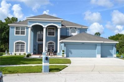 11710 Stonewood Gate Drive, Riverview, FL 33579 - #: T3114814