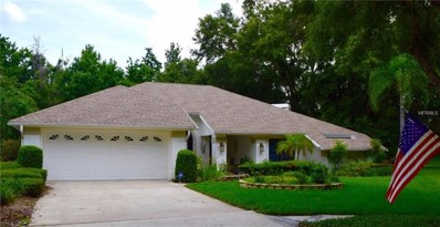 4701 Kinross Court, Valrico, FL 33596 - MLS#: T3114825