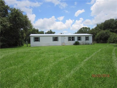 6101 Bob Head Road, Plant City, FL 33565 - MLS#: T3114862