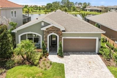 11871 Frost Aster Drive, Riverview, FL 33579 - MLS#: T3114882