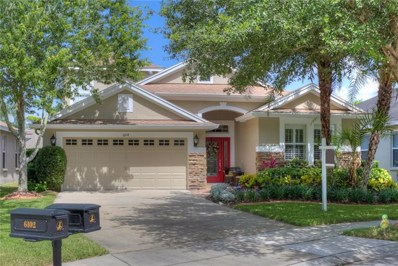 6104 Gannetwood Place, Lithia, FL 33547 - MLS#: T3114904