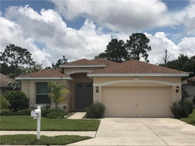 12319 Rose Haven Boulevard, New Port Richey, FL 34654 - MLS#: T3114953