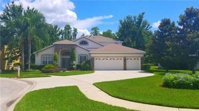 21517 Wilderness Lake Boulevard, Land O Lakes, FL 34637 - MLS#: T3114960