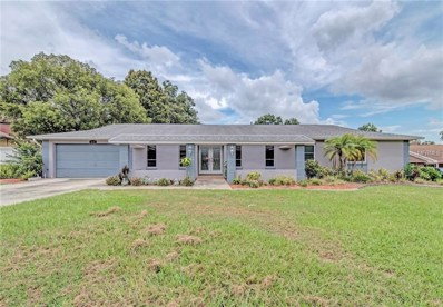 2219 Summit View Drive, Valrico, FL 33596 - MLS#: T3115063