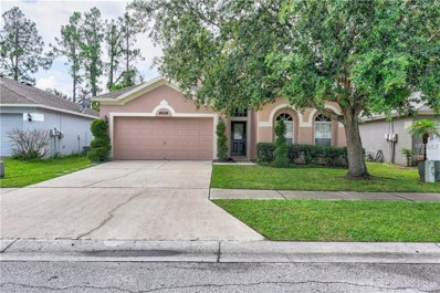 4624 Roundview Court, Land O Lakes, FL 34639 - MLS#: T3115074