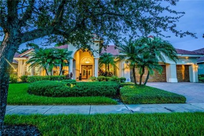 10003 Tree Tops Lake Road, Tampa, FL 33626 - MLS#: T3115098