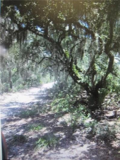 1ST Sugarsand, Wimauma, FL 33598 - MLS#: T3115218