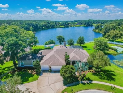 19517 Coachlight Way, Lutz, FL 33549 - MLS#: T3115324