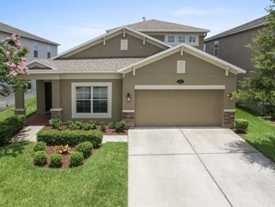 10619 Pictorial Park Drive, Tampa, FL 33647 - MLS#: T3115451