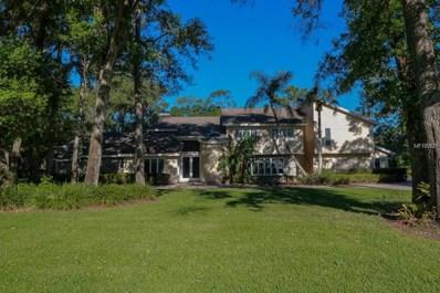 17506 Mallard Court, Lutz, FL 33559 - MLS#: T3115475