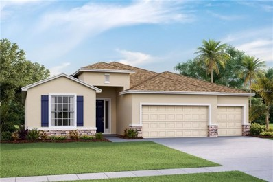 13857 Blythewood Drive, Spring Hill, FL 34609 - MLS#: T3115494