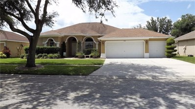 1013 Sweet Breeze Dr Drive, Valrico, FL 33594 - MLS#: T3115767
