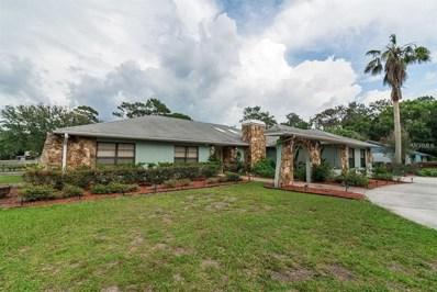 18523 30TH Street, Lutz, FL 33559 - MLS#: T3115863