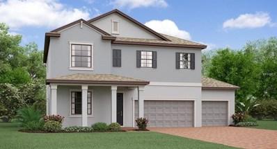 11709 Bearpaw Shale Street, Riverview, FL 33579 - MLS#: T3115958