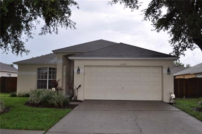 11303 Yeager Court, Riverview, FL 33578 - MLS#: T3116166