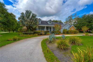 3413 Melissa Country Way, Lutz, FL 33559 - #: T3116416