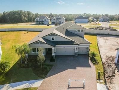 10801 Eagle Eye Way, Tampa, FL 33647 - #: T3116422