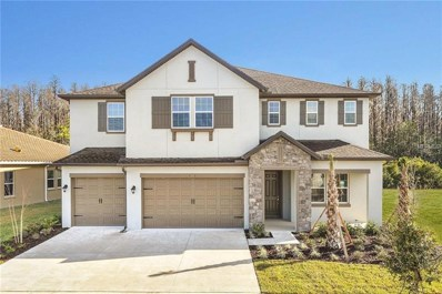 1776 Whitewillow Drive, Wesley Chapel, FL 33543 - MLS#: T3116680